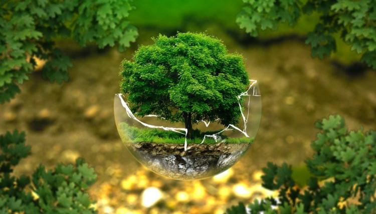 """Appels à projets H2020 du """"Green Deal"""" – soyez prêt pour le lancement mi-septembre"""