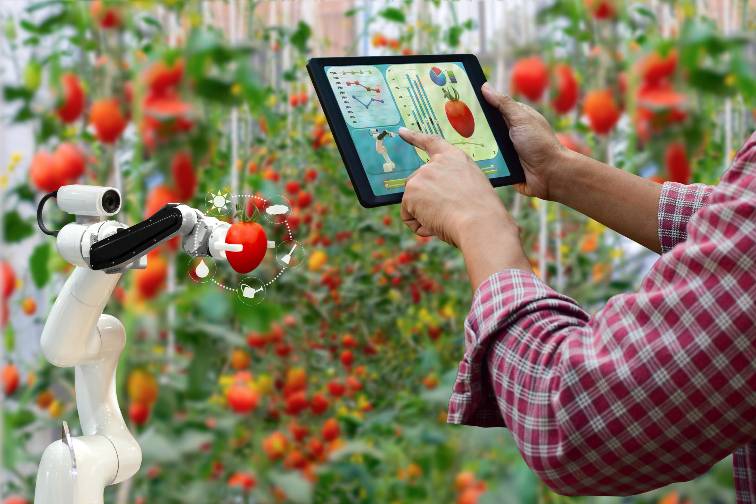 [Enjeu Société] Food Business, une année 2021 d'émergence et de confirmation